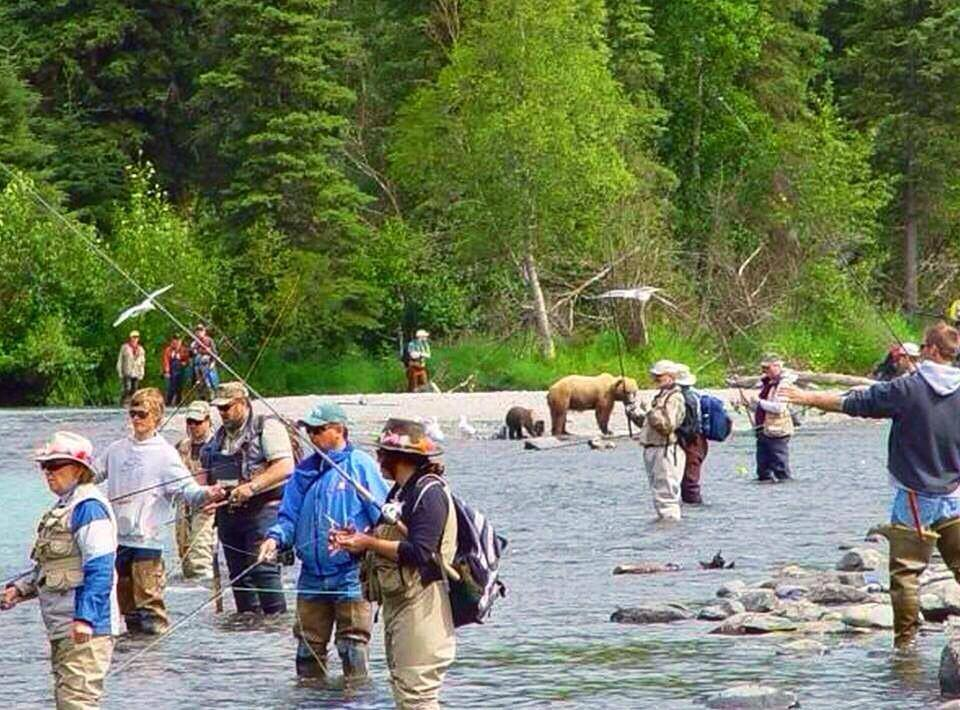 1A bears fishing with people