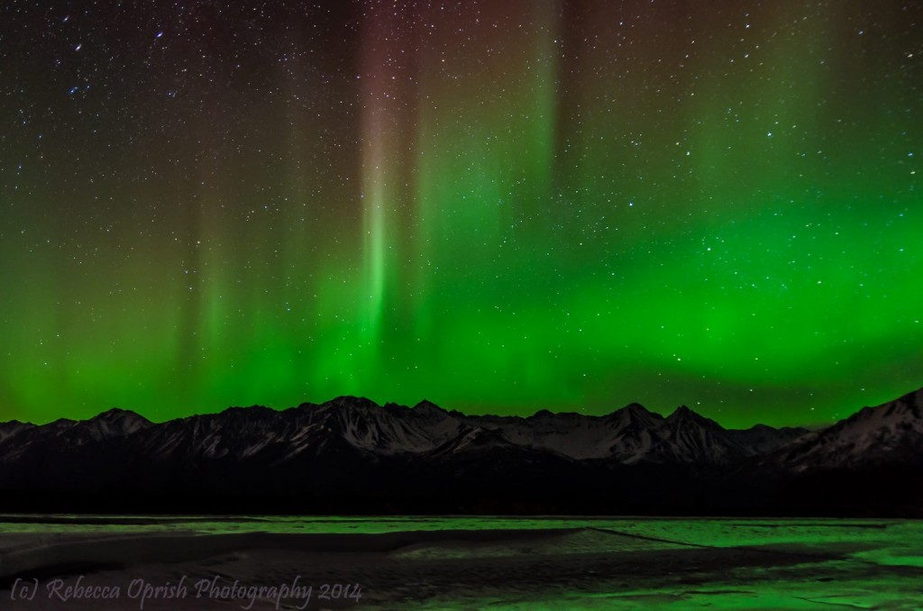 Aurora On March 25th, 2014. Photo By Rebecca Oprish Photography