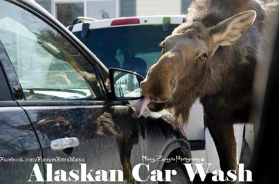 Best Alaskan Car Wash