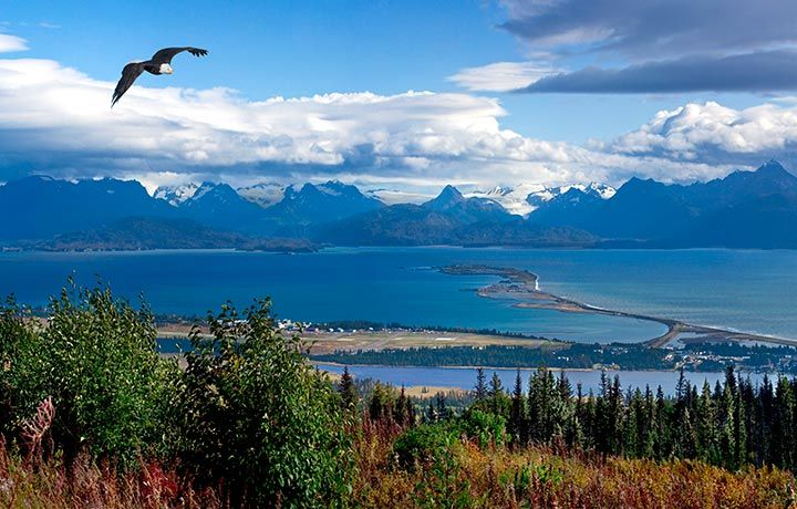 Homer Alaska. (Photo Author Unknown)