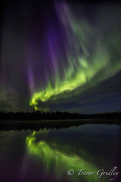 Northern Lights Dancing Across The Sky. Photo By Trevor's Alaska. 1,072 Likes