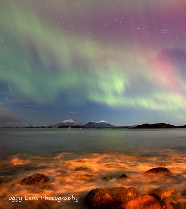Multicolored Aurora. Photo By Foggy Lens Photography. 1,098 Likes