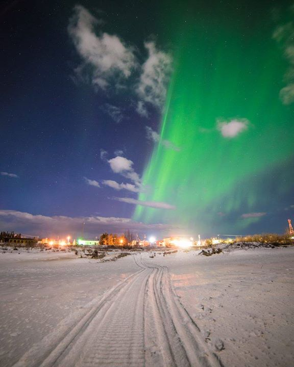 Northern Lights Over Delta Junction. Photo By Sebastian Saarloos. 1,435 Likes