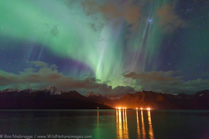 Over Resurrection Bay Seward. Photo By Ron Niebrugge. 961 Likes