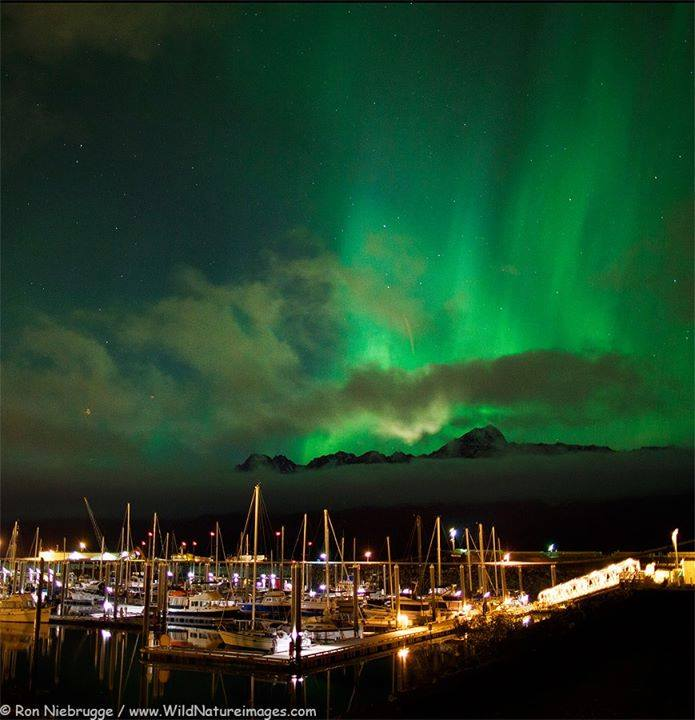 Incredible Northern Lights Over Seward Boat Harbor. Photo By Ron Niebrugge. 1,612 Likes